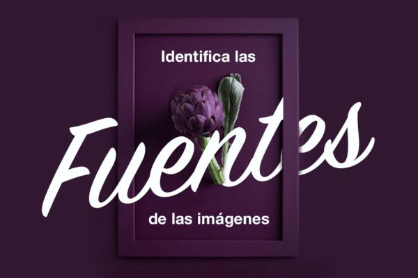 Cómo identificar las tipografías de las imágenes para subirlas a tu página web